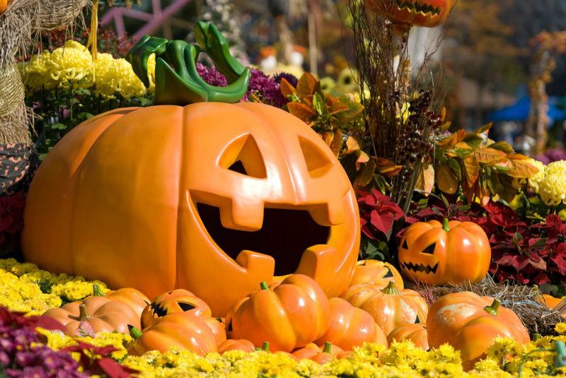 Essiccazione Zucca Di Halloween.Come Riciclare La Zucca Di Halloween Originalitaly